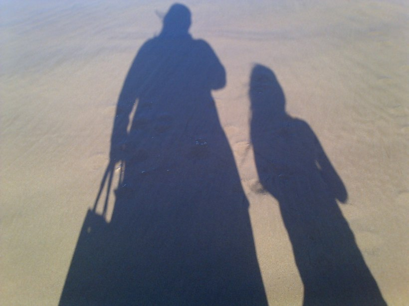 shadows, handbag
